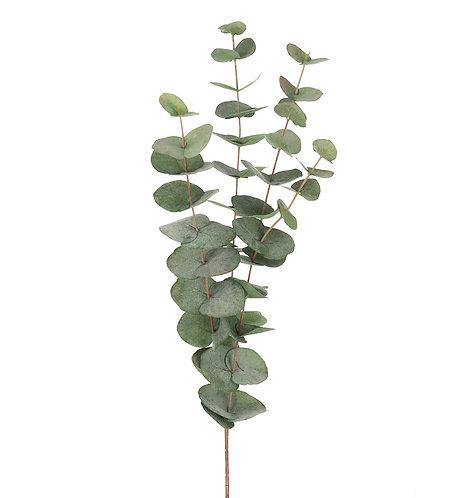 Mr. Plant - Kunstig eucalyptus 60cm
