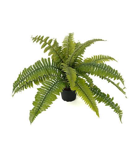 Mr. Plant - Kunstig bregne 30cm