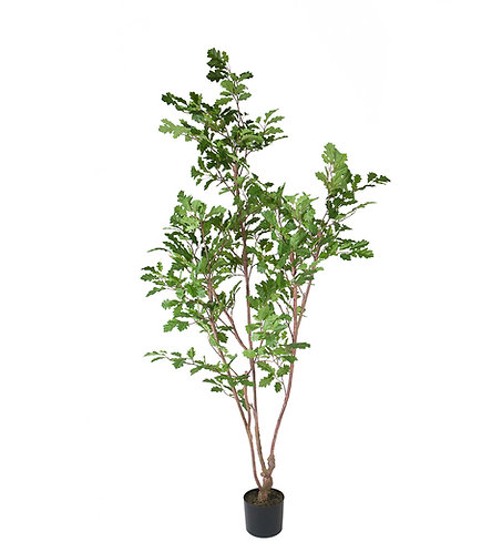 Mr. Plant - Kunstig eik 170cm