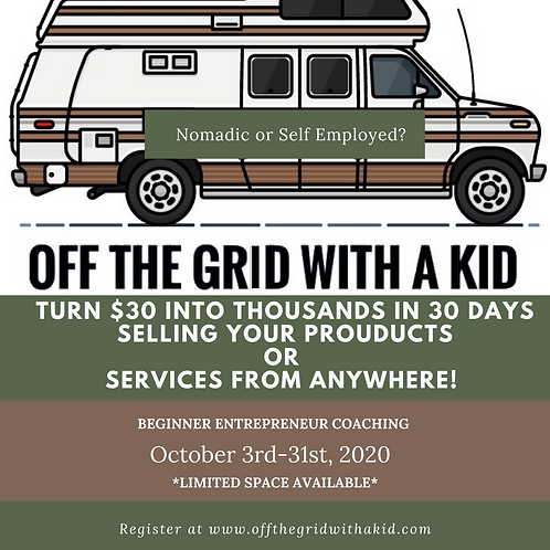Beginner Entrepreneur Webinar+30 Days of Free Coaching!