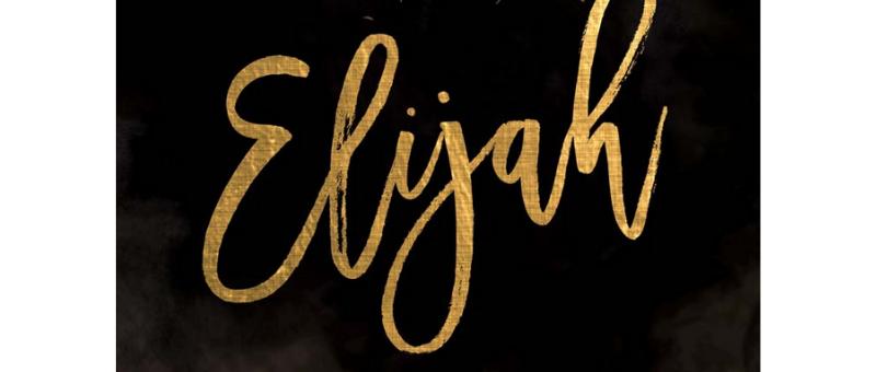 Elijah Workbook by Priscilla Shirer