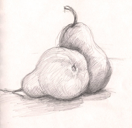 Beginning Drawing for Adults
