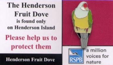 Henderson -  Fruit Dove