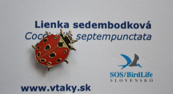 SOS ladybird