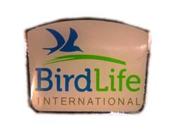 BL Logo Pin