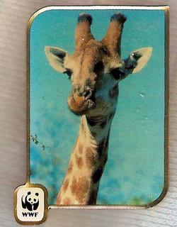 AU Giraffe