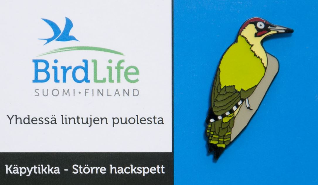 Finland Birdlife Green Woodpecker