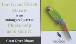 JOCOTOCO GREAT GREEN MACAW