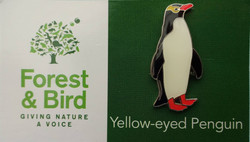 NZ Yellow-eyed Penguin