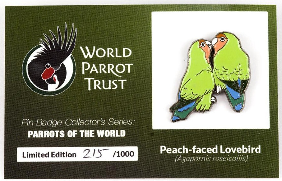 #6 Peach-faced Lovebirds