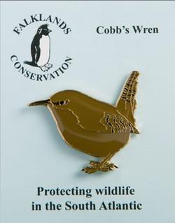 Cobbs Wren