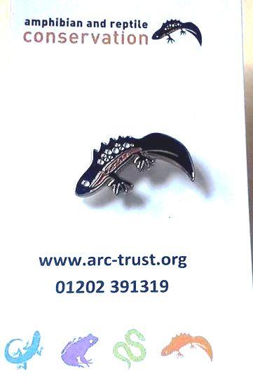 ARC Newt