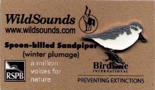 WildSounds - Spoon-Billed Sandpiper
