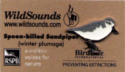 WildSounds - Spoon-Billed Sandpiper