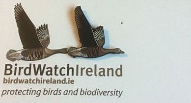 Ireland Bird Watch_edited