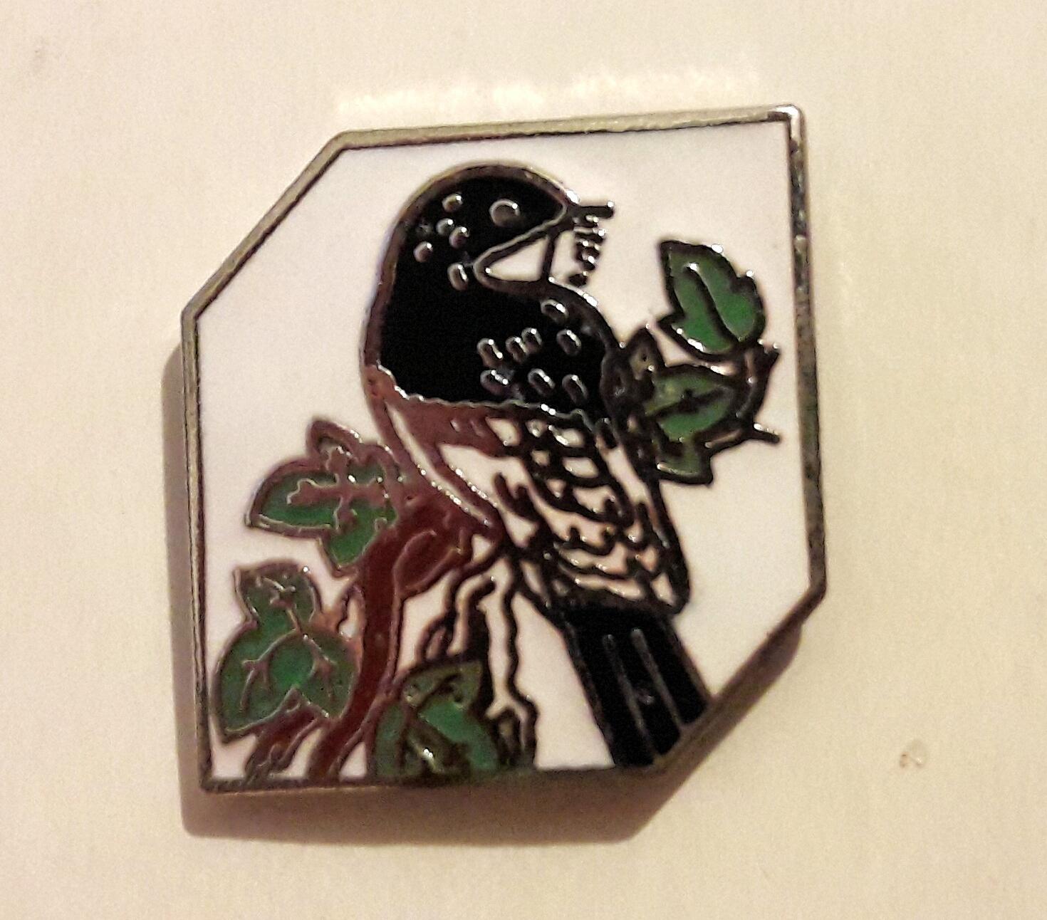Herefordshire Nature Logo pin