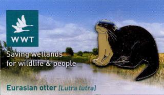 WWT Eurasian otter