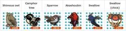 WBSJ Birdmate Line 3