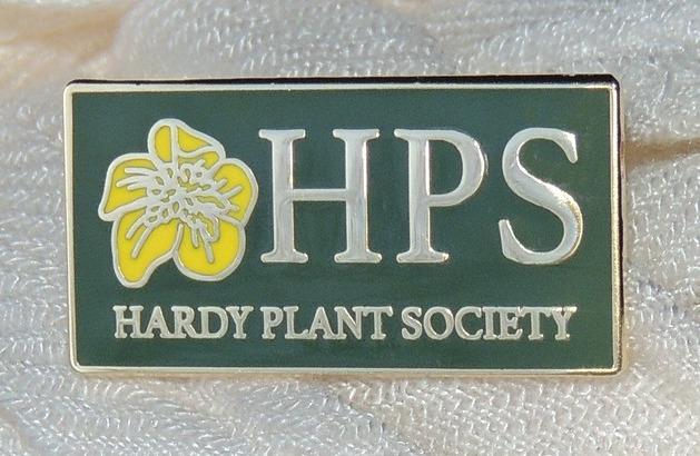 HPS Small
