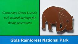 Sierra Leone Hippo_edited