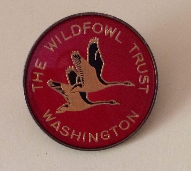 The-Wildfowl-Trust-Washington-WWT-Acrylic-Pin-Badge-_57