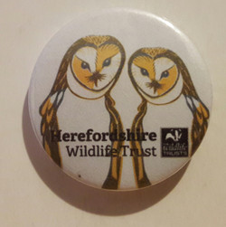 Herefordshire button