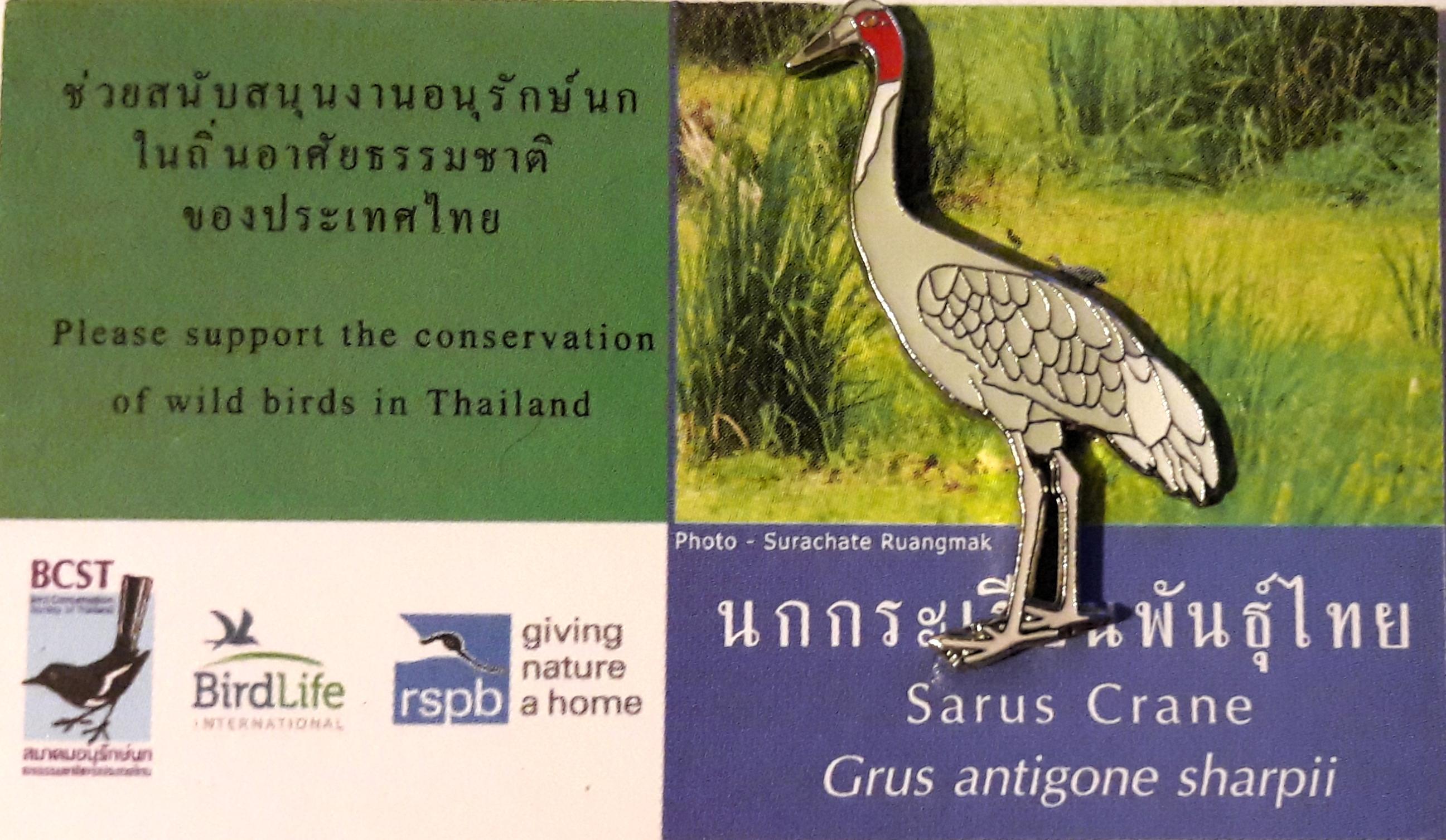 Thailand Sarus Crane