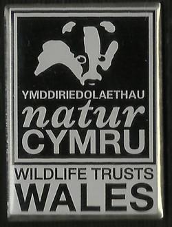 WT Wales Logo