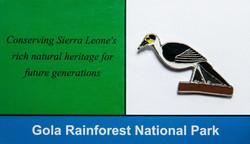Sierra Leone Picarthes_edited