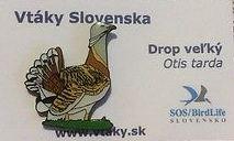 Slovakia Bustard