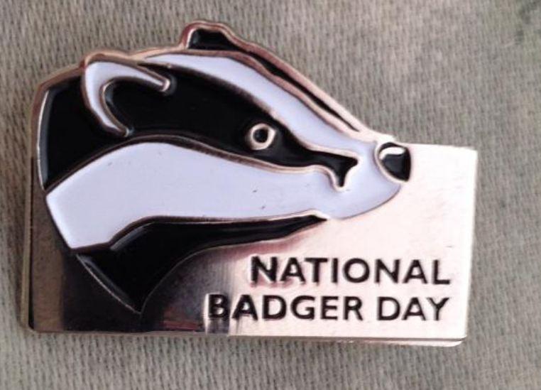 Badger Trust Day
