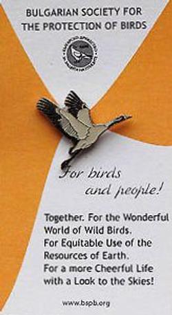 BSPB-Common-Crane