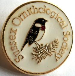 Sussex Orithology