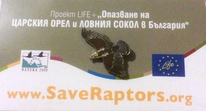 Save the Raptors