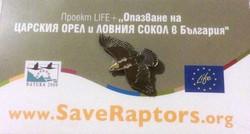 Save the Raptors