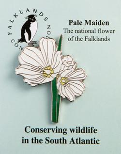 Pale Maiden