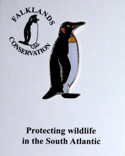 Falklands King Penguin Older Design