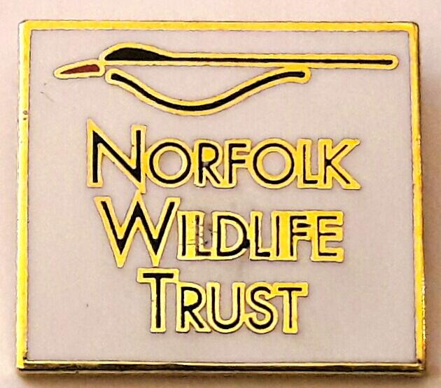 Norfolk Logo Gold