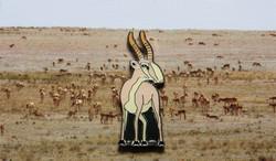 Kazakhstan Saiga Antelope