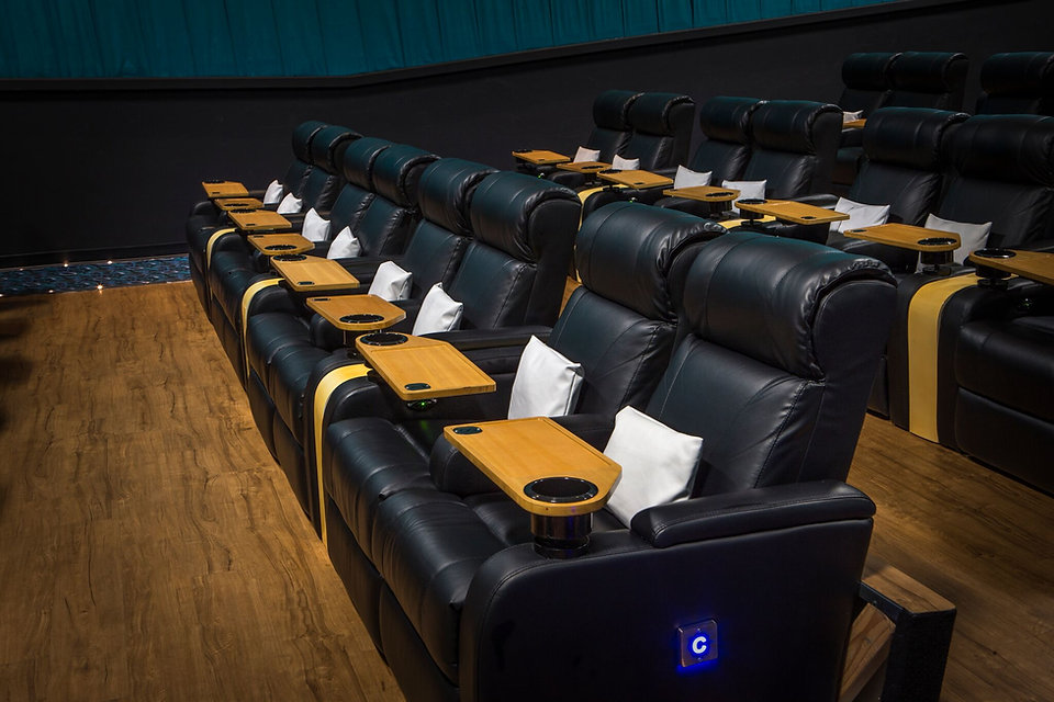 vip relcienrs installed at touchstar cinemas florida