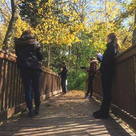 Crew Filming Trees.jpg