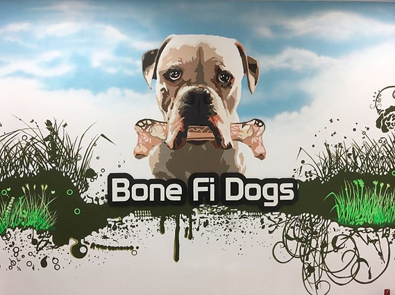 Bone Fi Dogs