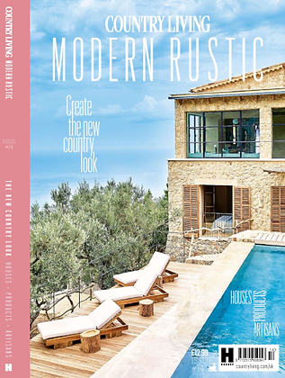 Modern Rustic Francine Kay cover.png
