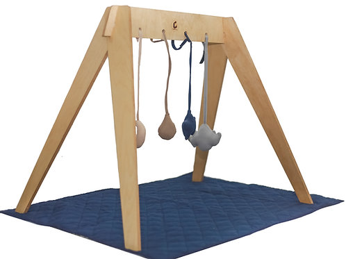 PlayGym/Mini Tent