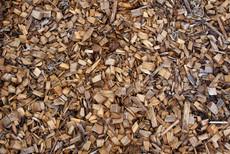 sistem de încălzire pe combustibil biomasă