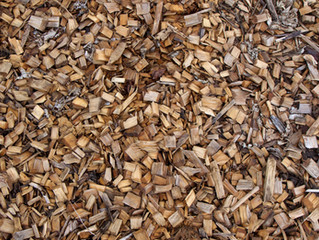 To Mulch, or Not To Mulch?