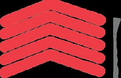 raitech logo arrow.png