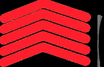 raitech logo arrow_edited.png