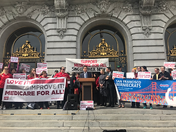 medicare for all city hall steps.png