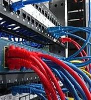 network3_edited.jpg